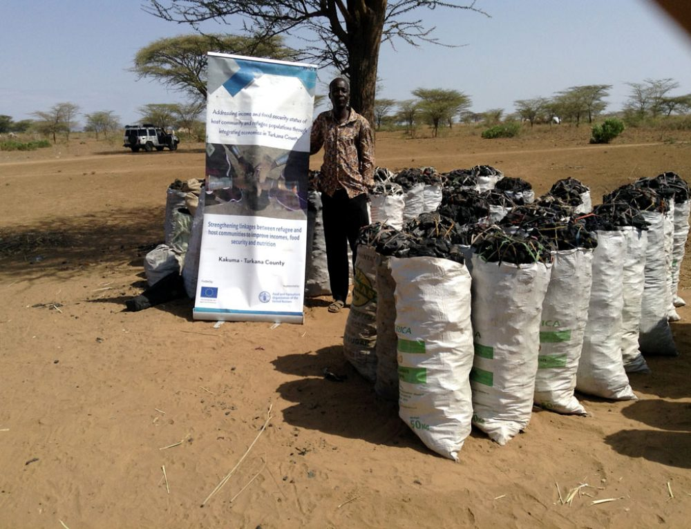 (English) Clean Energy Coming to Kenya's Kakuma Refugee Camp