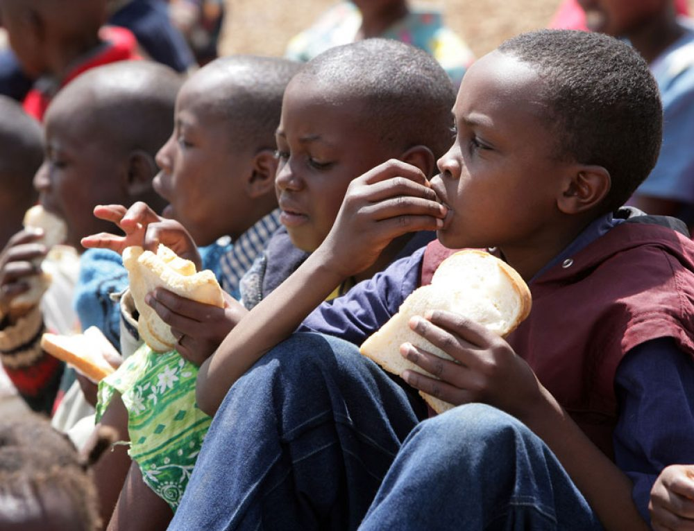 Hunger and Food Insecurity Plague the Lives of Millions in Africa